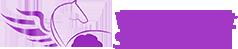 VSS Logo